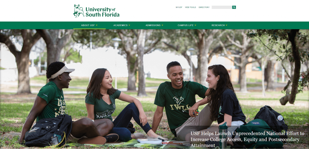 University of South Florida example of low code app development
