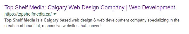 SEO Basics Google snippet example
